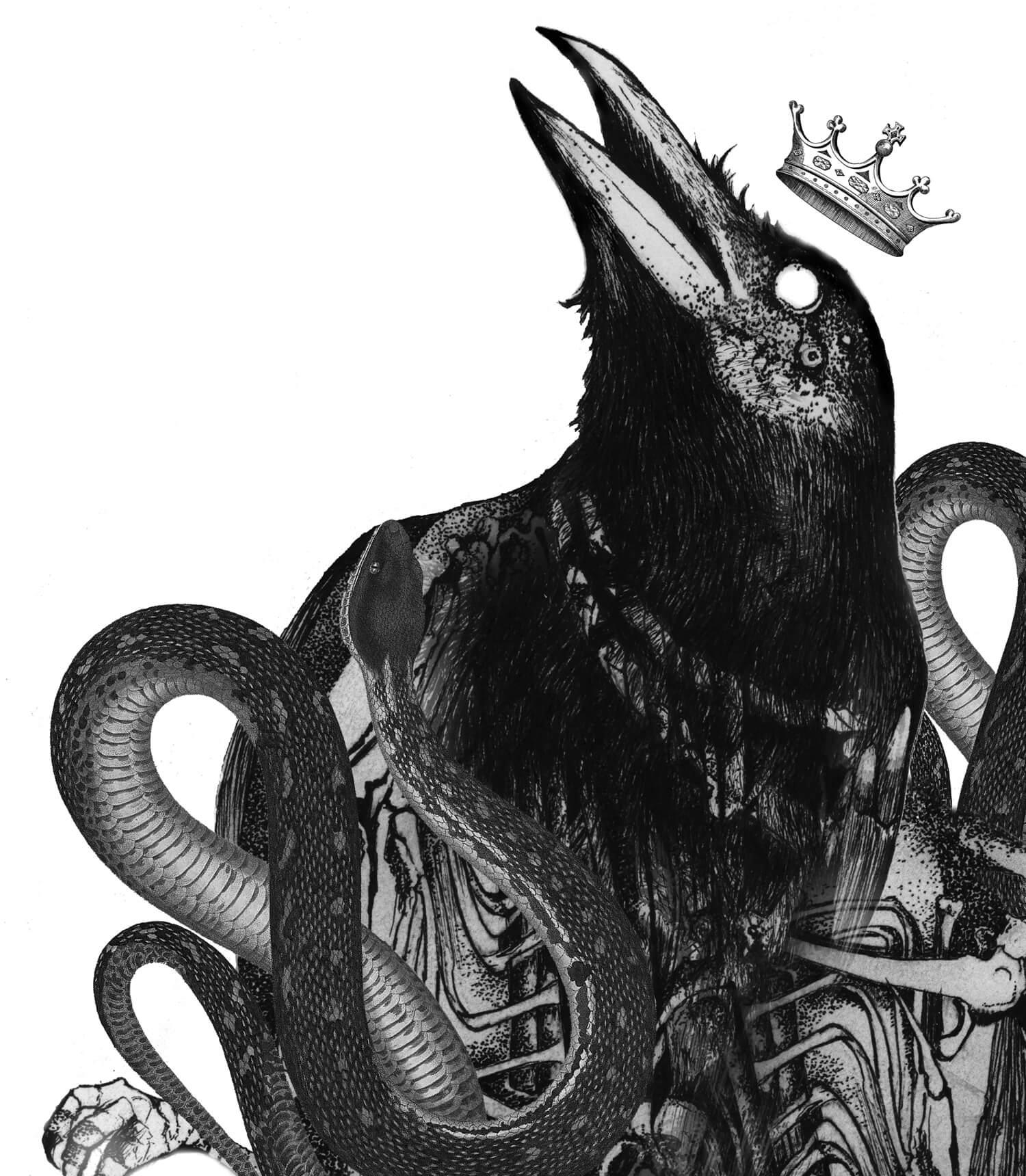 olga_mulica_black_bird__hose_03