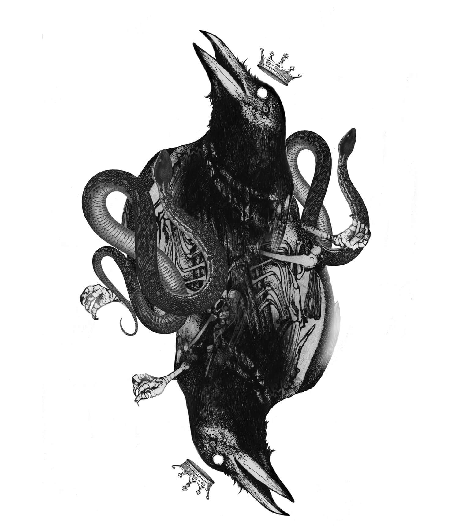 olga_mulica_black_bird__hose_05